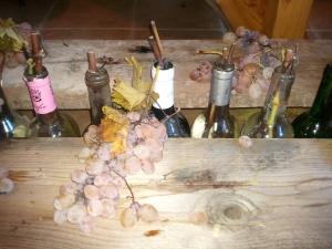 Une rangée de bouteilles en guise de vases, entre deux planches tout confort...